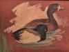 tapyba (2)
